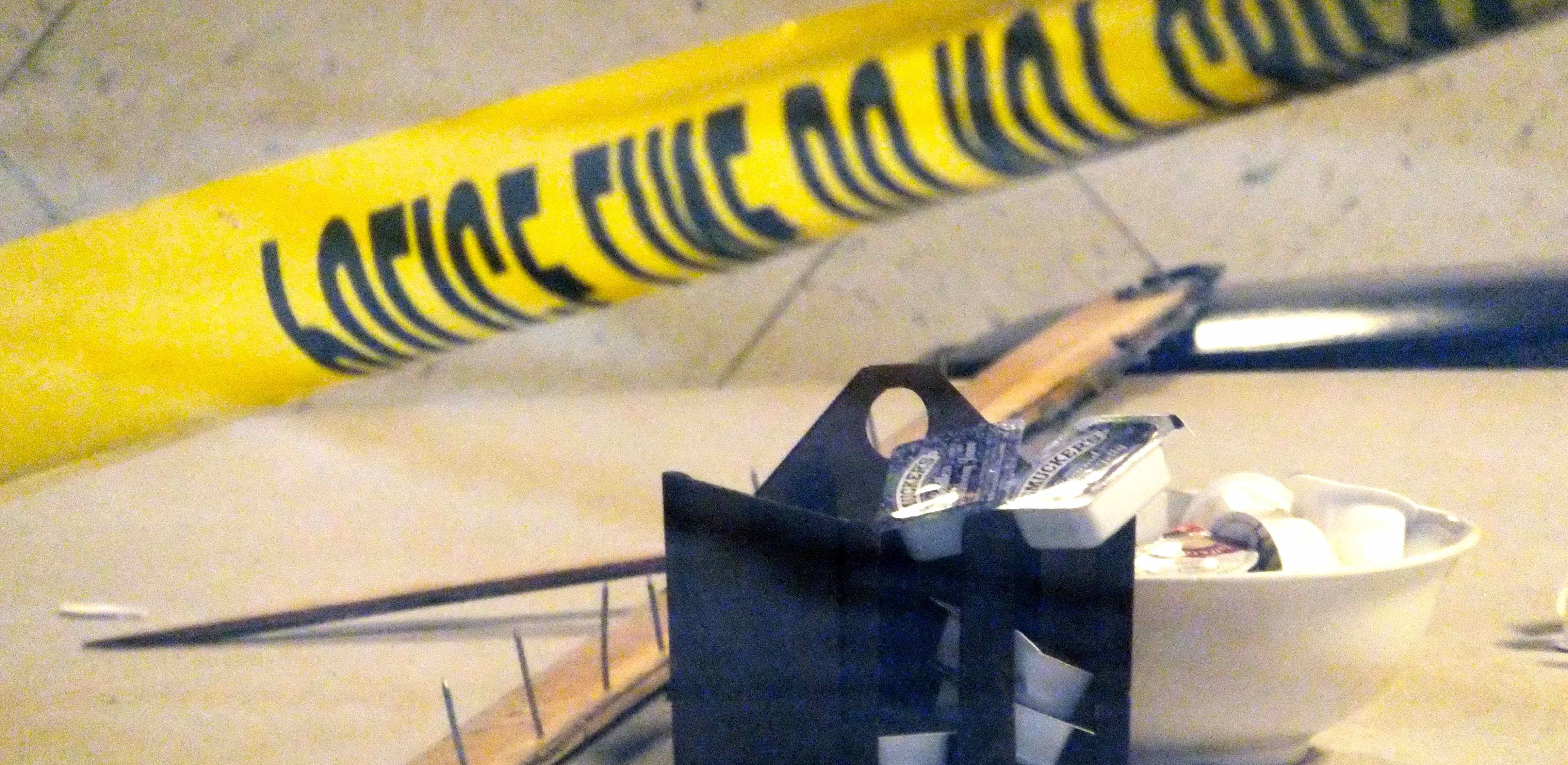 Woman Dies in Diner Crash