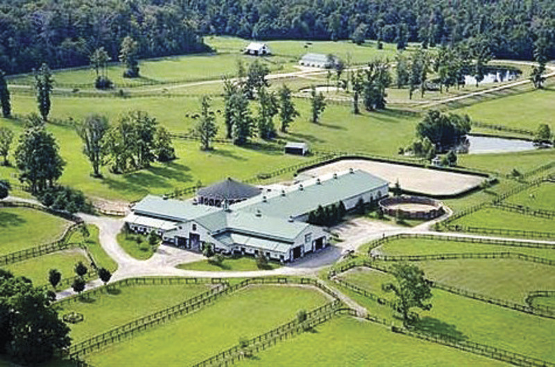 Horse Farm Making Great Strides Geauga County Maple Leaf
